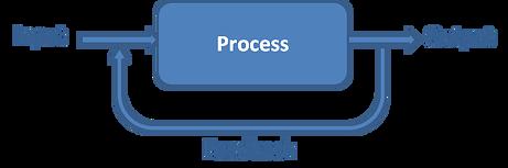 Process1